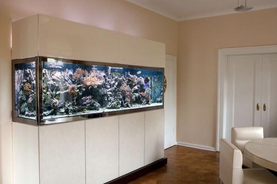 Aquarienpflege München