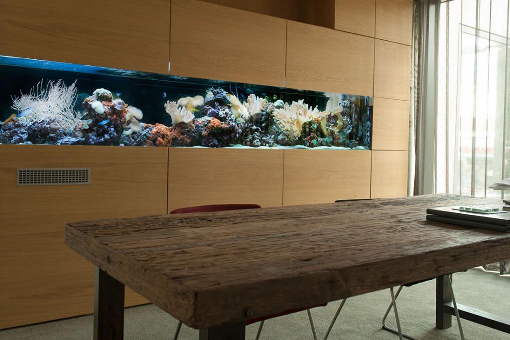meerwasseraquarium kaufen neu oder grbraucht ist eine. Black Bedroom Furniture Sets. Home Design Ideas