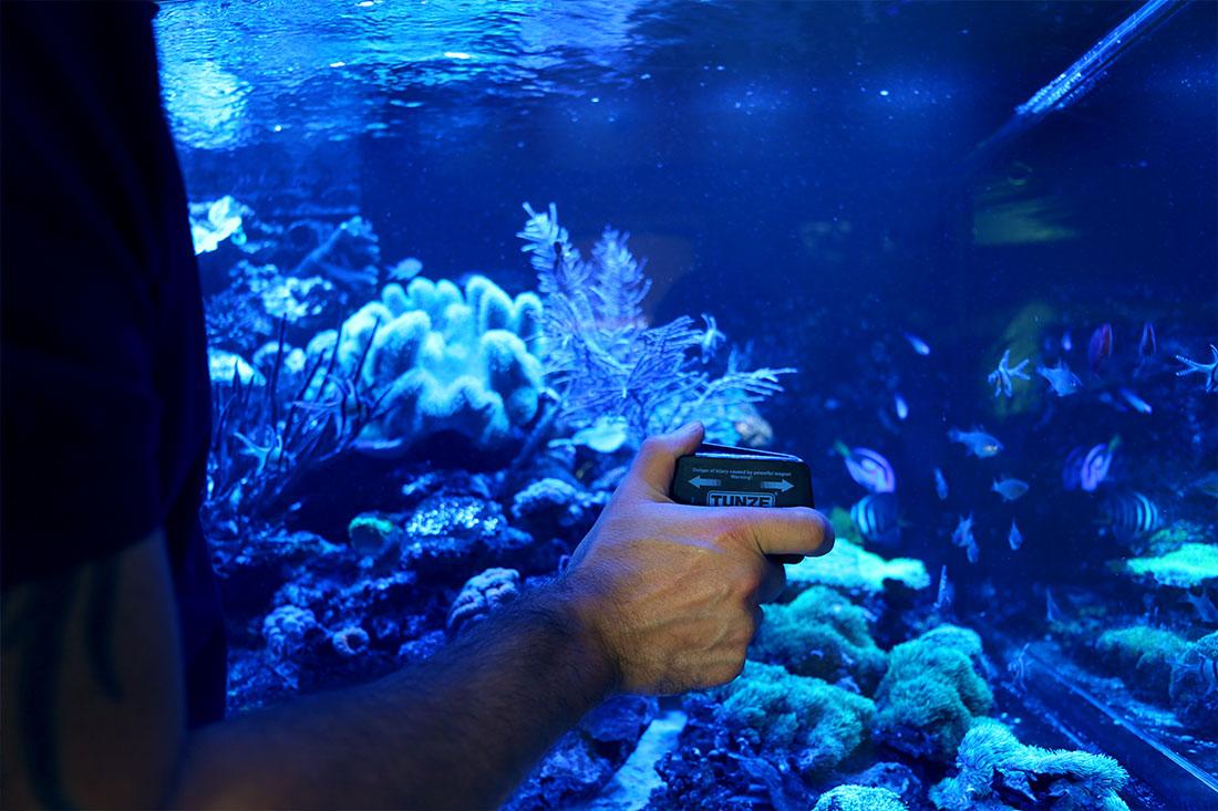 Aquariumbauer