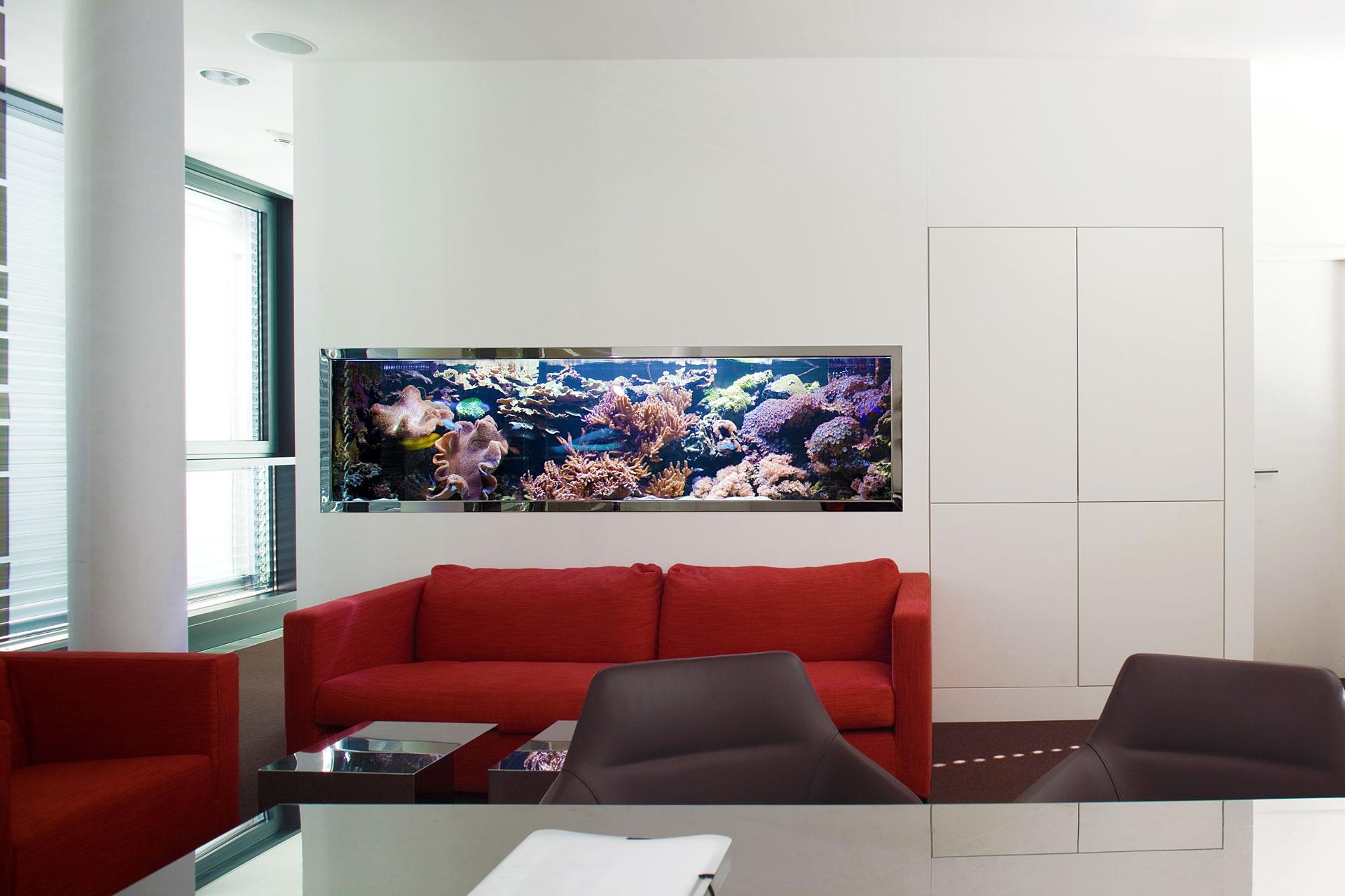 Meerwasseraquarium und Kritik
