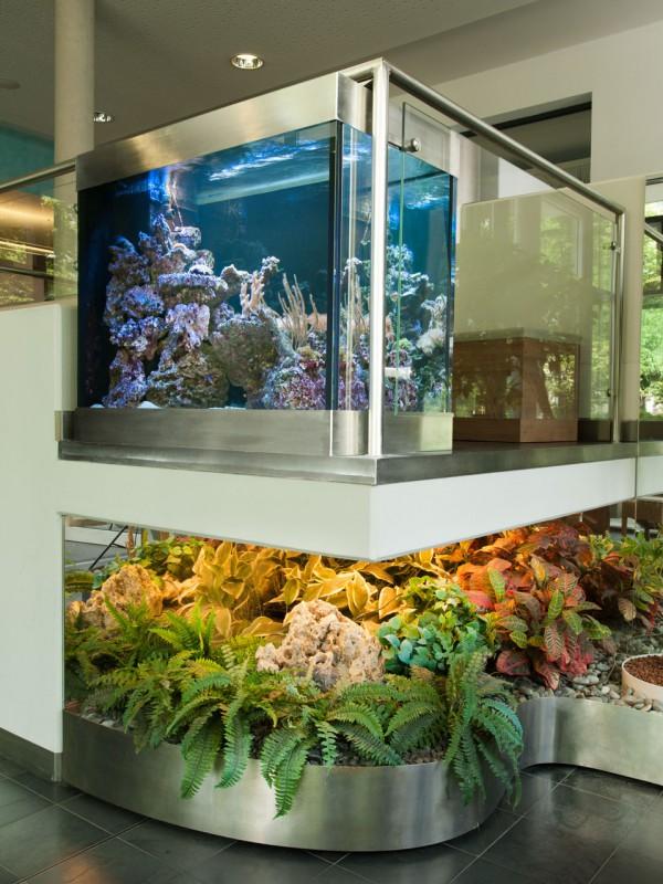 Aquarium in der Privatklinik