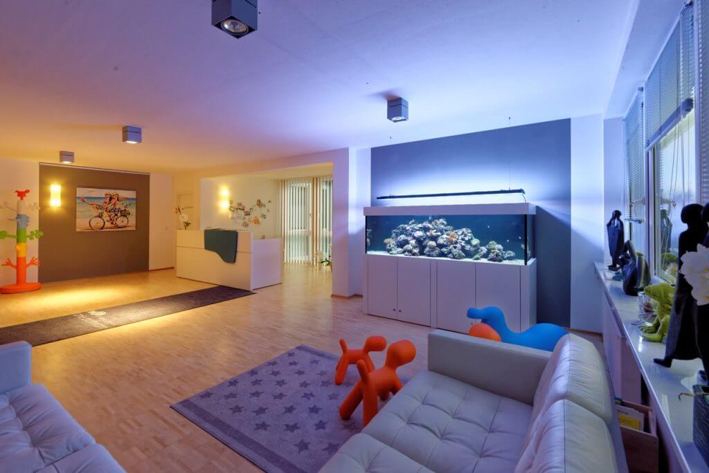 lps korallen alles was du wissen musst was ist alles zu beachten. Black Bedroom Furniture Sets. Home Design Ideas