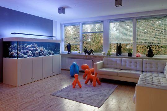 Kinderartzpraxis Aquarium bei München