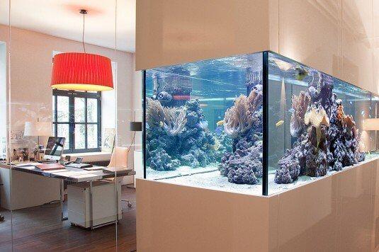 Wenn Konstrukteure träumen - Meerwasser Aquarium München