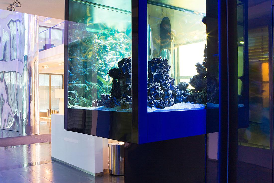 Schlicht-elegantes Aquarium