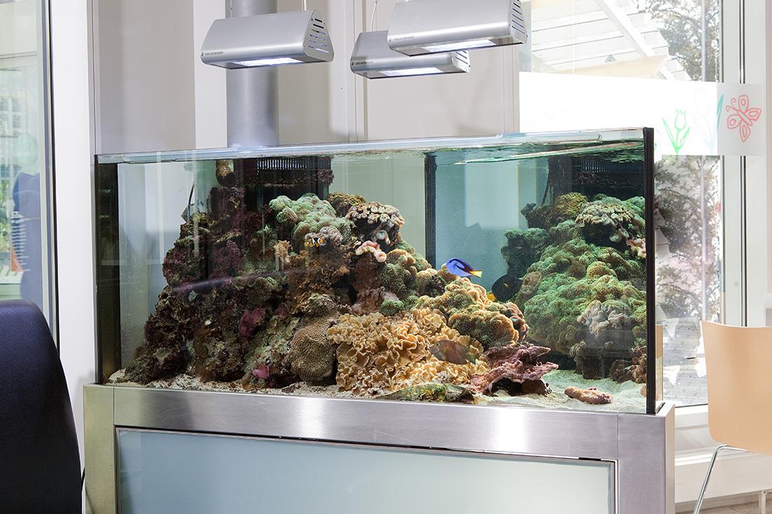 Kinderklinik Aquarium