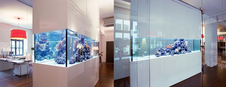 Aquarien als Designmöbel