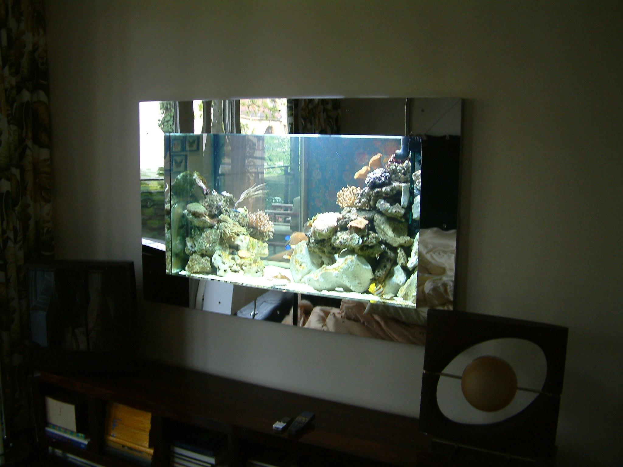 Aquarium München - Wasserwechsel im Meerwasseraquarium