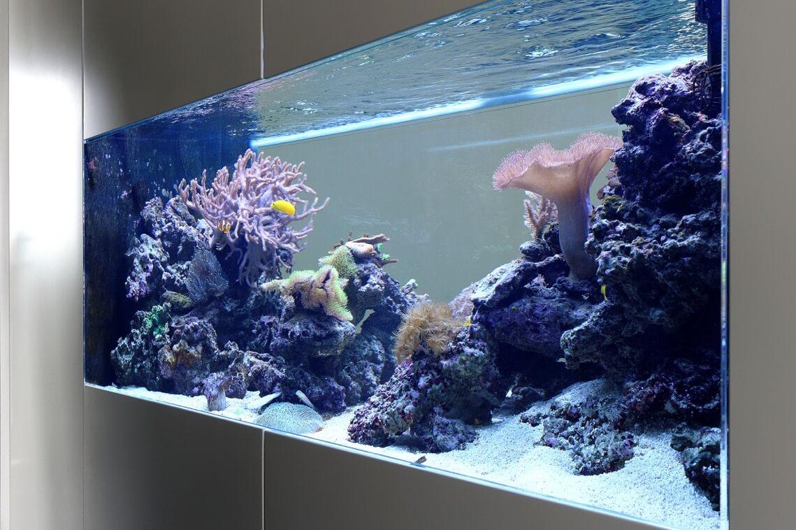 Aquarium München - Aquarium West GmbH
