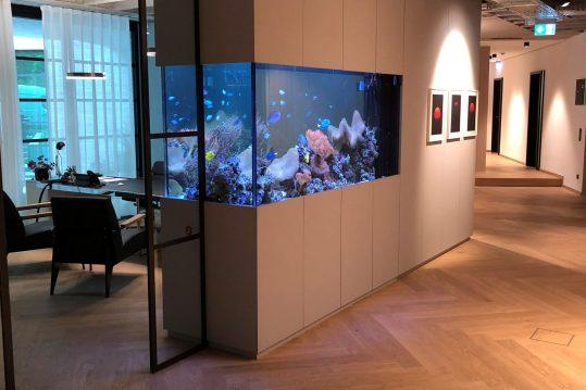 Meerwasseraquarium kaufen gebraucht