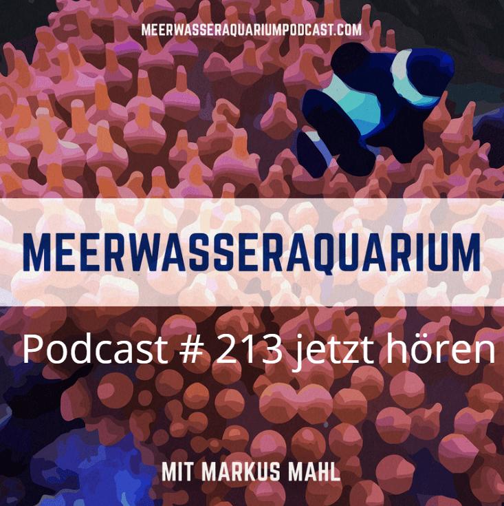 ICP Analyen Meerwasseraquarium